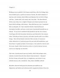 gun control essay pdf